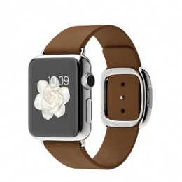 38mm Stainless Steel Case with Brown Modern Buckle